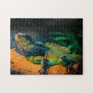 Iguana Wildlife Jigsaw Puzzle