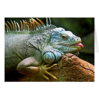 Iguana with Tongue Sticking Out Blank Card