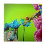 Iguana y rana azulejo cerámica