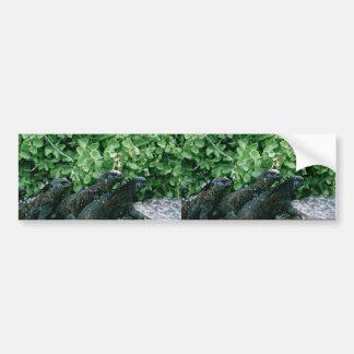 Iguanas marinas etiqueta de parachoque