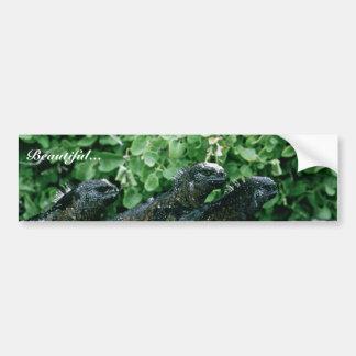 Iguanas marinas pegatina de parachoque