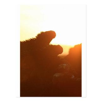 Iguanas marinas en roca volcánica en la puesta del