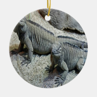 Iguanas reptile nature design ceramic ornament