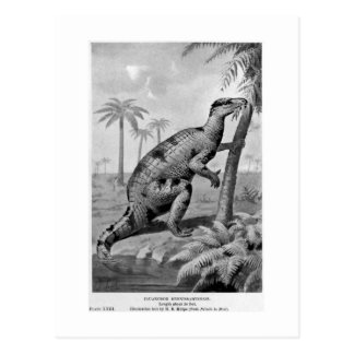 Iguanodon bernissartensis art postcard