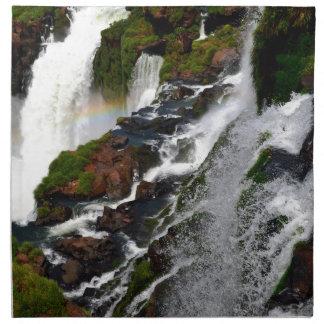 Iguazu Falls 5 Napkin