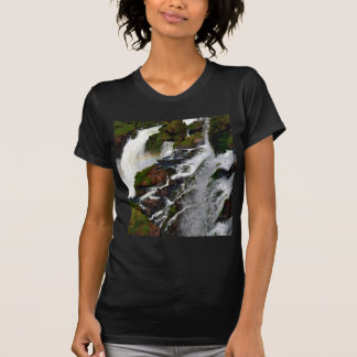 Iguazu Falls 5 T-Shirt