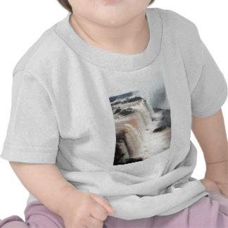iguazu falls Brazill T Shirts