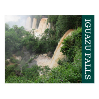 iguazu falls jungle postcard
