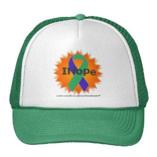 IH Fire Ribbon Green Cap * IH * Mesh Hat