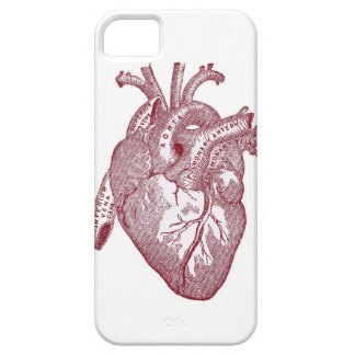 iHeart iPhone 5 Case