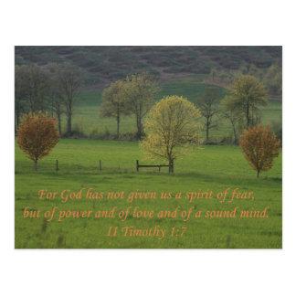 II 1:7 de Timothy Postales