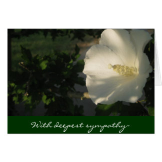 II With deepest sympathy~ Card