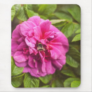 III color de rosa Tapete De Ratones