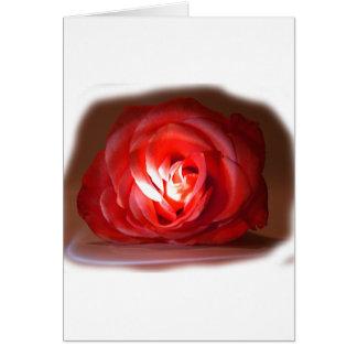 Iimage puesto de relieve rosa rosado tarjeta