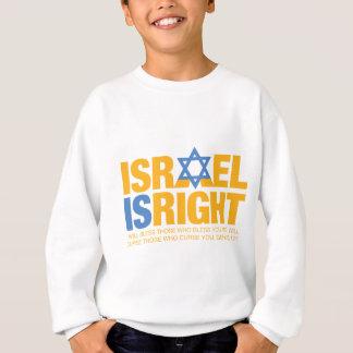iir_fullsizd_gold3 sweatshirt