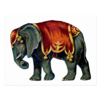 iIustração viejo del elefante del circo Tarjetas Postales