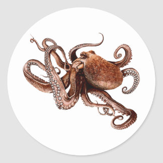 Iker The Octopus Classic Round Sticker