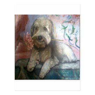 il cane che pensa postcard