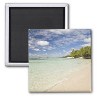 Ile Aux Cerf, most popular day trip for 2 2 Inch Square Magnet