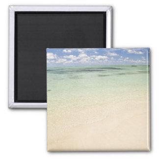 Ile Aux Cerf, most popular day trip for 2 Inch Square Magnet