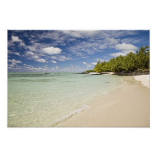 Ile Aux Cerf, most popular day trip for 2 Poster