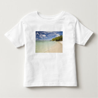 Ile Aux Cerf, most popular day trip for 2 Tshirts