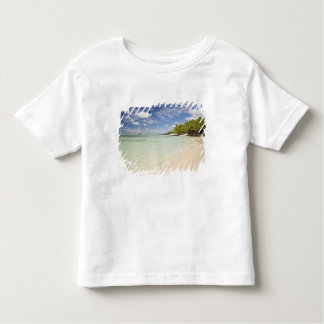Ile Aux Cerf, most popular day trip for 2 T Shirt