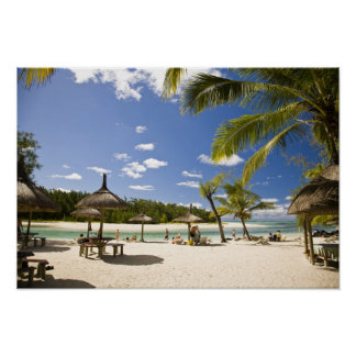Ile Aux Cerf, most popular day trip for 3 Poster
