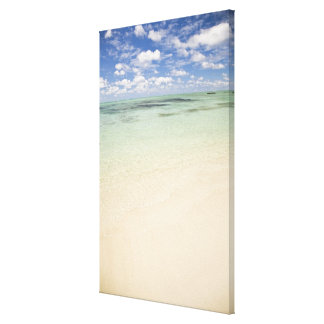 Ile Aux Cerf, most popular day trip for Stretched Canvas Print