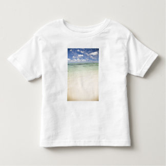 Ile Aux Cerf, most popular day trip for Tshirts
