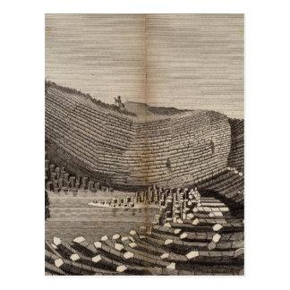 Ile de Staffa Postcard
