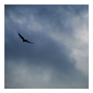 I'll Fly Away Poster