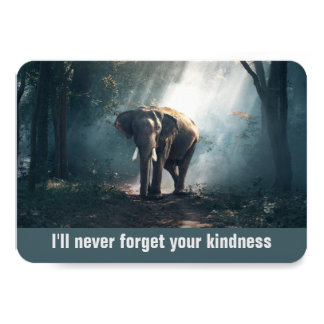 I'll Never Forget Your Kindness Elephant Thank You Card