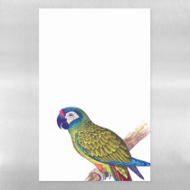 Illegers Macaw Parrot Dry Erase Magnetic Sheet