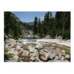 Illilouette Creek in Yosemite National Park Postcard
