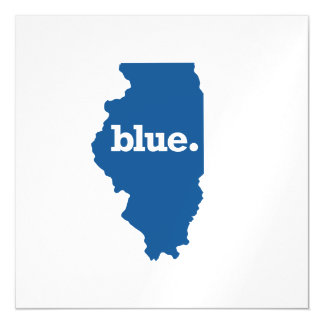ILLINOIS BLUE STATE MAGNETIC CARD