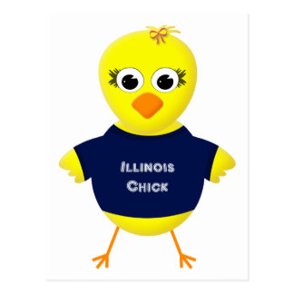 Illinois Chick Cute Cartoon Chicken Postcard
