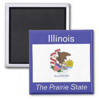 Illinois Flag Magnet
