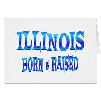 Illinois llevada y aumentada tarjetón
