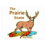 Illinois Prairie State Whitetail Deer Postcard