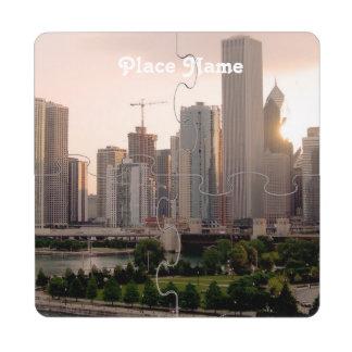 Illinois Puzzle Coaster
