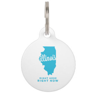 illinois   right here, right now   sky blue pet name tag