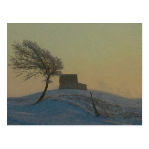 Illinois Snow Storm Postcard