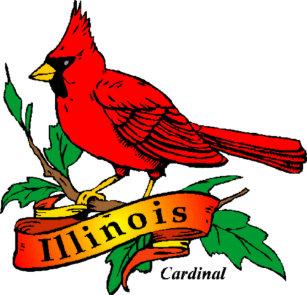 state bird of illinois gifts on zazzle