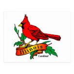 Illinois State Bird - Cardinal Postcards
