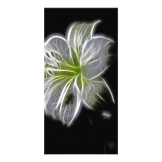 Illuminated like Outline of a White lily Flower Photo Card