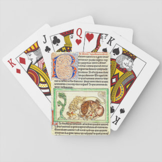 Illuminated Page 1250 Playing Cards