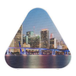 Illuminated skyline of downtown Miami at dusk Speaker
