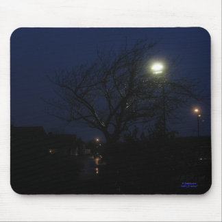 Illuminated Tree at Night Mouse Mat