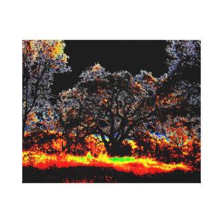 Illuminated Trees Canvas Print